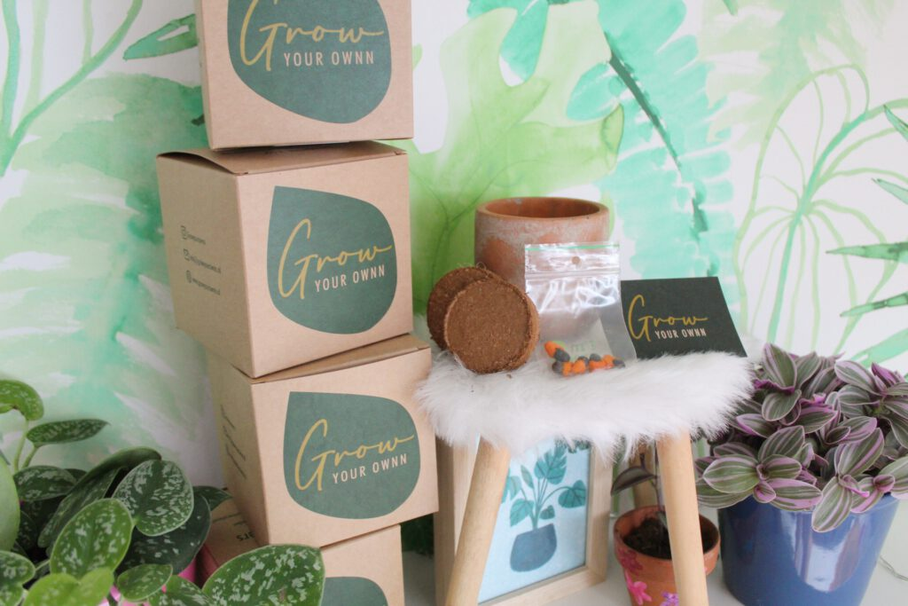 Grow Your Ownn Houseplant Growsets